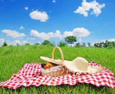 Ja już myślę o pikniku