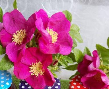dżem truskawkowy z różą