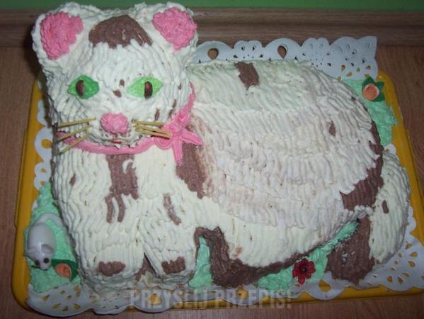 Tort Kot Przyslijprzepispl