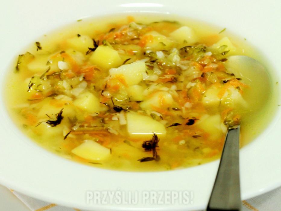 Znalezione obrazy dla zapytania Zupa ogórkowa z wędzonymi żeberkami